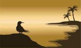 一只鸟剪影在海滩的 免版税库存图片