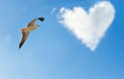 一只鸟和一朵云彩以心脏的形式 免版税库存图片