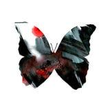 一只蝴蝶的剪影与水彩五颜六色的摘要后面的 免版税图库摄影