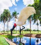 一只Tuiuiu鸟的雕塑在格兰德营` s机场前面的 图库摄影