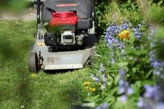 一台刈草机 库存图片