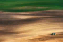 一台小蓝色拖拉机培养一个大春天彩色场 免版税库存图片