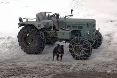一台拖拉机和一条狗在一个积雪的风景在阿尔卑斯瑞士 免版税库存图片