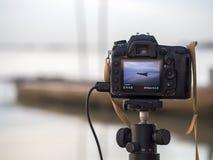 一台照相机的特写镜头在户外三脚架的 在焦点外面的背景风景 库存照片