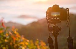 一台照相机的特写镜头在户外三脚架的 库存图片