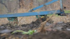 一台蓝色拖拉机在深刻的秋天犁黑土壤 冬天地面准备 股票录像