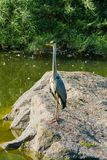 一台长的起重机观察路人站立在水库中的一块石头 库存照片