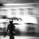 一名妇女在雨中 库存图片