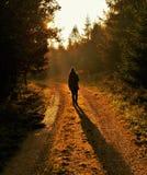 一名妇女的剪影有长的阴影的在一条供徒步旅行的小道 免版税库存图片