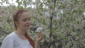 一名妇女的画象在一个美丽的开花的庭院里 股票视频