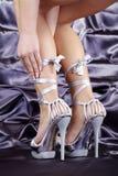 一名妇女的脚有鞋子的 库存照片
