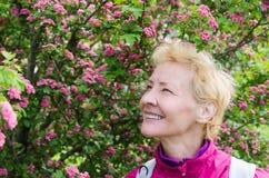 一名妇女的画象一棵开花的山楂树的 库存图片