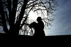 一名常设妇女的剪影有花的在树旁边 库存图片