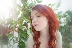 一名年轻美丽的梦想的红头发人妇女的嫩画象在叶子中的 库存图片
