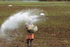 一名未认出的农厂工人投掷在Kuttanad的稻田的肥料 图库摄影