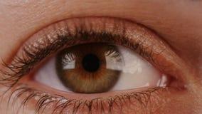 一名棕色妇女的眼睛的宏观射击 影视素材