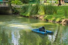 一名浮动水搬家工人,避免死水和蚊子饲养,在一个豪华的泰国庭院公园的周围的水路 库存图片