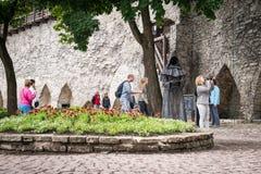 一名神奇修士,在堡垒墙壁的一个图在老塔林, 免版税库存图片