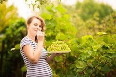 一名美丽的年轻孕妇在夏天站立在藤葡萄附近 免版税库存图片