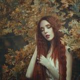 一名美丽的年轻肉欲的妇女的画象有非常长的红色头发的在秋天橡木离开 秋天的颜色 免版税库存图片