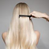 一名美丽的白肤金发的妇女的后面看法画象有长的头发的 免版税库存照片