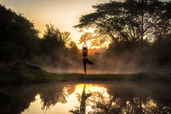 一名美好的瑜伽healty妇女的剪影在温泉公园的早晨 免版税图库摄影