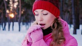 一名年轻可爱的白种人妇女的画象在冬天森林温暖在桃红色手套的手 影视素材