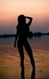 一名年轻肉欲的妇女的剪影河水的 库存照片