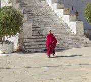 一名年轻Bhuddhist修士在Paro,不丹 免版税库存照片