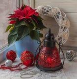 一品红在圣诞节大量producti的前夕窗口里 图库摄影