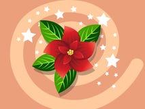 一品红象传染媒介圣诞节、新年快乐和装饰 免版税库存图片