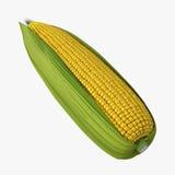 一在白色隔绝的玉米穗 3d例证 图库摄影