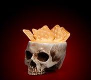 一块人的头骨的碗 图库摄影