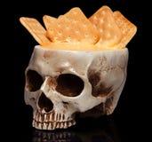 一块人的头骨的碗 免版税图库摄影