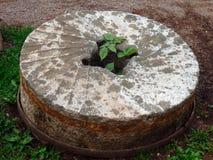 一块使用的磨石从先驱天 免版税库存照片