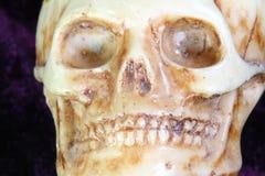 一块古老人的头骨的画象在前景的 免版税库存图片