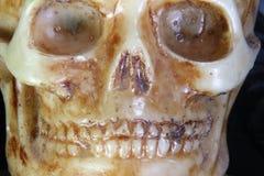一块古老人的头骨的画象在前景的 免版税库存照片