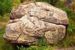 一块大石头在草中的森林里 免版税库存照片