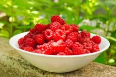 一块板材用莓果成熟莓 库存图片