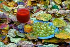 一块板材用葡萄和与一份红色饮料的一块玻璃在黄色叶子站立 免版税库存照片