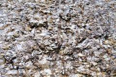 一块灰色白色山层状石头的抽象图象,可以是我们 免版税库存图片