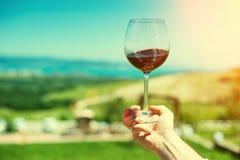 一块玻璃用在山风景的背景的红葡萄酒 库存照片