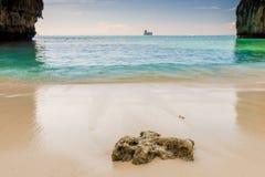 一块石头的特写镜头在海滩的在背景的焦点 库存照片