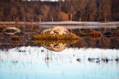 一块石头在水中 免版税库存照片