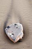 一块石头的特写镜头在海滩的兰萨罗特岛 免版税图库摄影