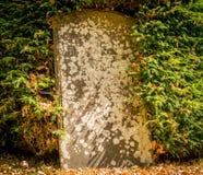 一块老被放弃的未玷污的墓碑 免版税库存图片