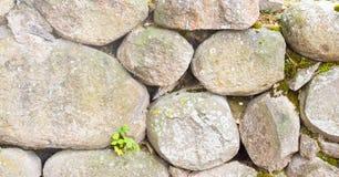 一块自然石头 他们一起用水泥涂 免版税库存图片