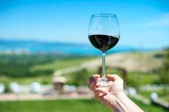 一块玻璃用在山风景的背景的红葡萄酒 免版税库存照片