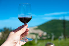 一块玻璃用在山风景的背景的红葡萄酒 库存图片