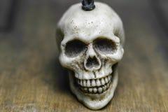 一块头骨有木背景 免版税库存图片